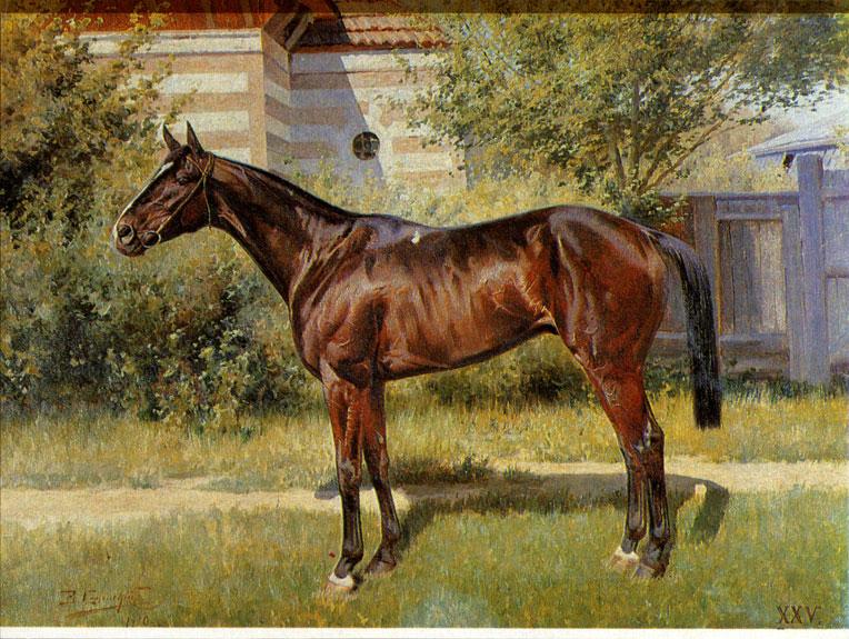 Чистокровная верховая порода лошадей