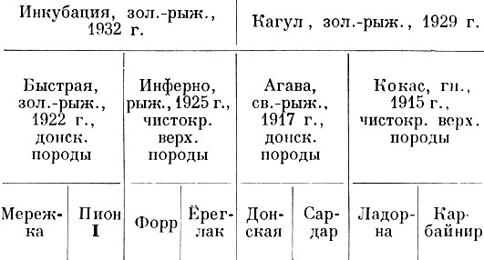 120 Клипс, рыжий, 1943 г.,