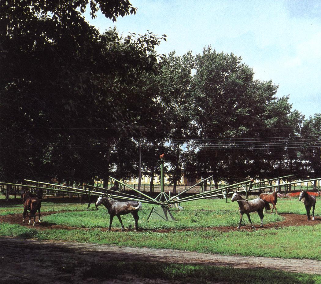 'Водилка' для дозированного моциона лошадей в период тренировки
