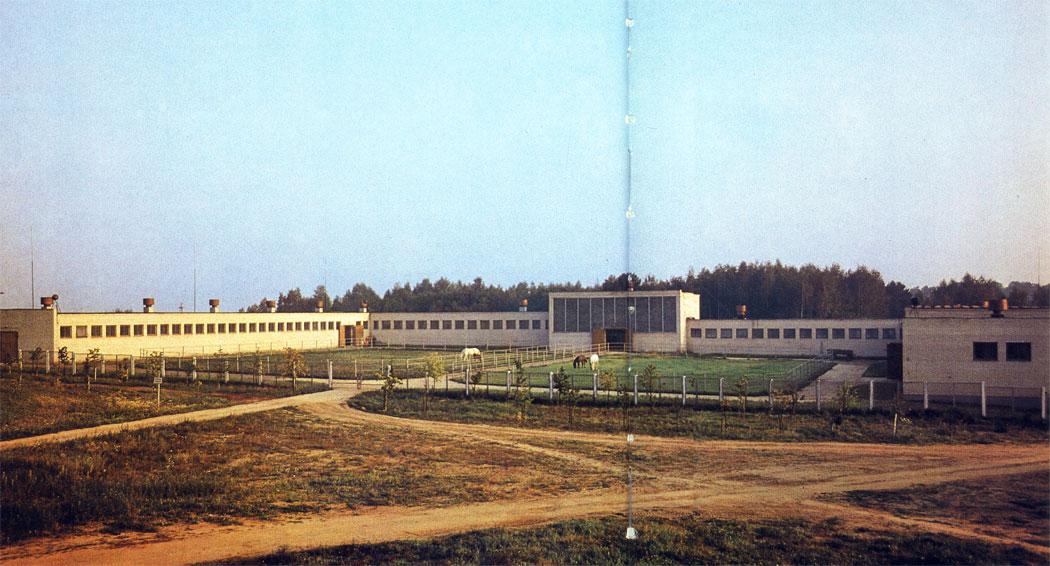 Общий вид конюшни Московского конного завода