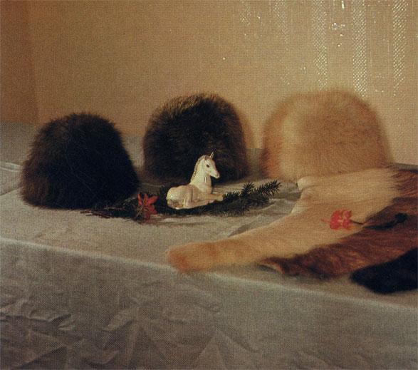 Табунные лошади местных пород Сибири на зиму обрастают густым мехом. При забое жеребят на мясо получают отличные легкие шкуры, из которых шьют шапки, воротники и другие меховые изделия